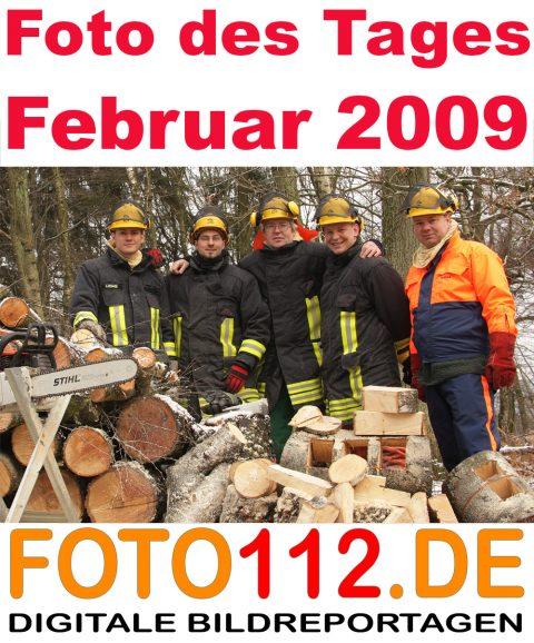 Foto-des-Tages-TH-Wald