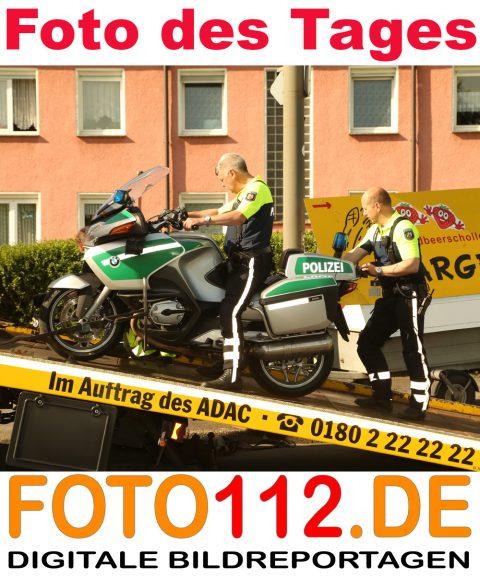 7-Foto-des-Tages-Rudi