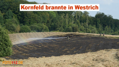 Westrich brennt Kornfeld
